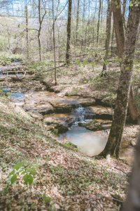 Bring water shoes and explore our beautiful creek